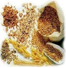 Cereales enteros