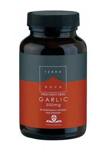 Ajo 500 mg (Allium sativum) 50 Vcáps Terranova