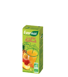 ZUMO MULTIFRUTA BIO 200ML 6UNIDADES EVERNAT