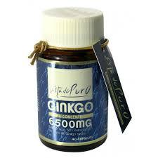 Ginkgo 6500 mg 40cap Estado Puro TONGIL