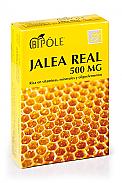 BIPOLE JALEA REAL 500MG 20 AMP  INTERSA