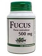 FUCUS 100 COMP PLANTAPOL