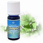 Aceite esenciales Cilantro, hierba 10 ml.OSHADHI