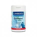IBISENE 180 COMP LAMBERTS