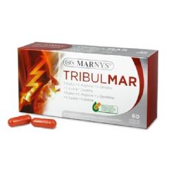 TRIBULMAR 60CAP MARNYS