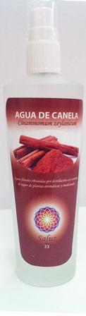 AGUA DE CANELA 100ML SALUZ 33