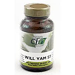 WILD YAM 60CAP CFN